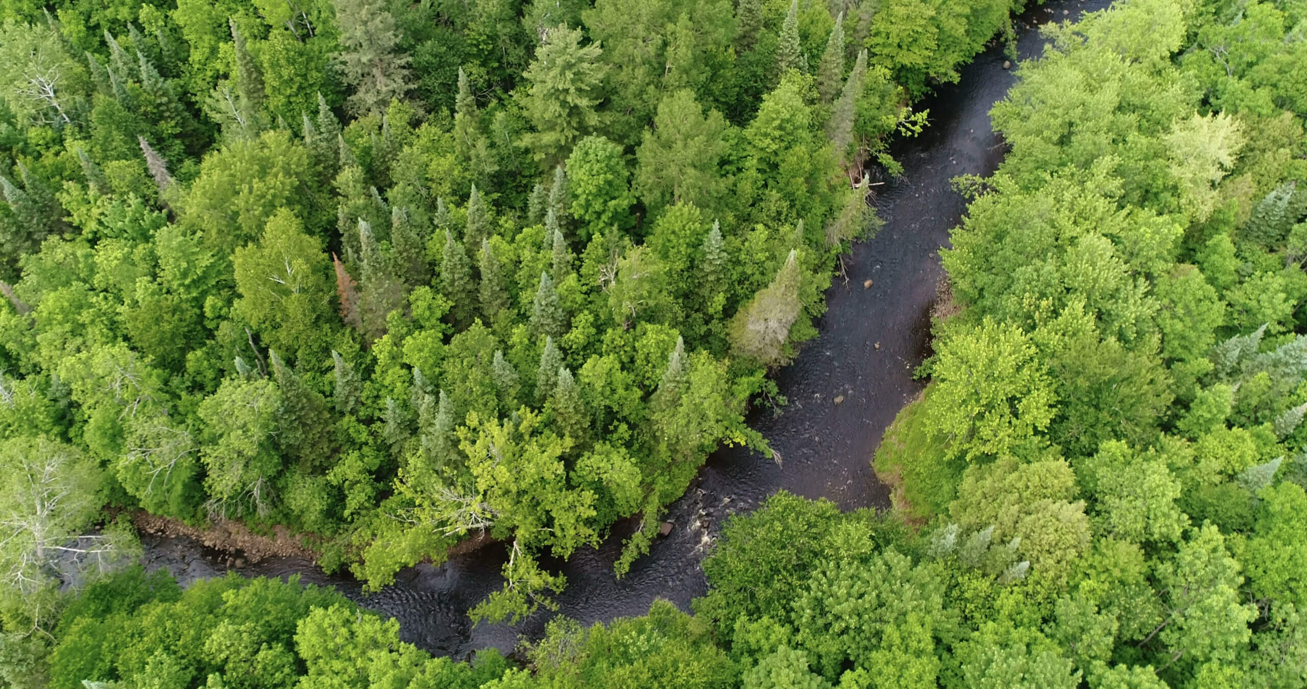 An aerial view of the Tyler Forks Community Forest, owned by Landmark Conservancy, and acquired with funds from Wisconsin's Knowles-Nelson Stewardship Program