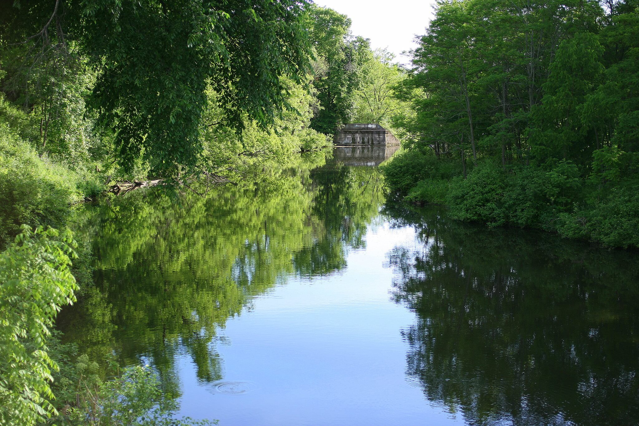 The Kinnickinnic River, where 40 acres of forest were recently conserved thanks to the Knowles-Nelson Stewardship Fund.