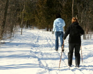 Two skiiers in a forest. The Knowles-Nelson Stewardship Program recently helped maintain a key ski trail connection on the MECCA Trail System.