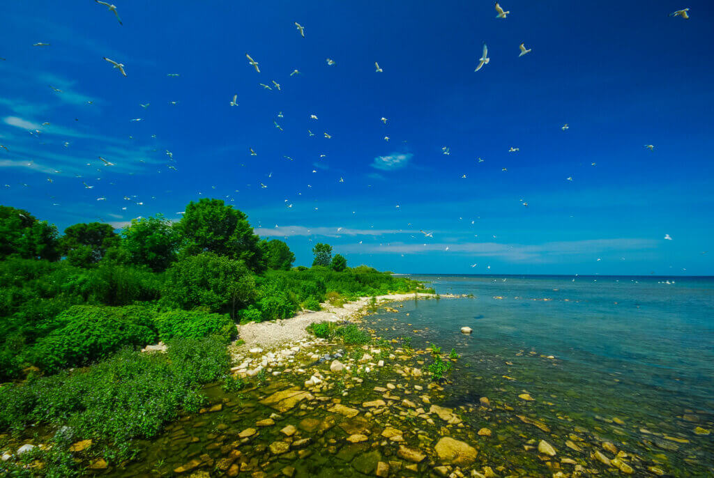 An island in Door County, where the board of supervisors just approved a resolution in support of the Knowles-Nelson Stewardship Program.
