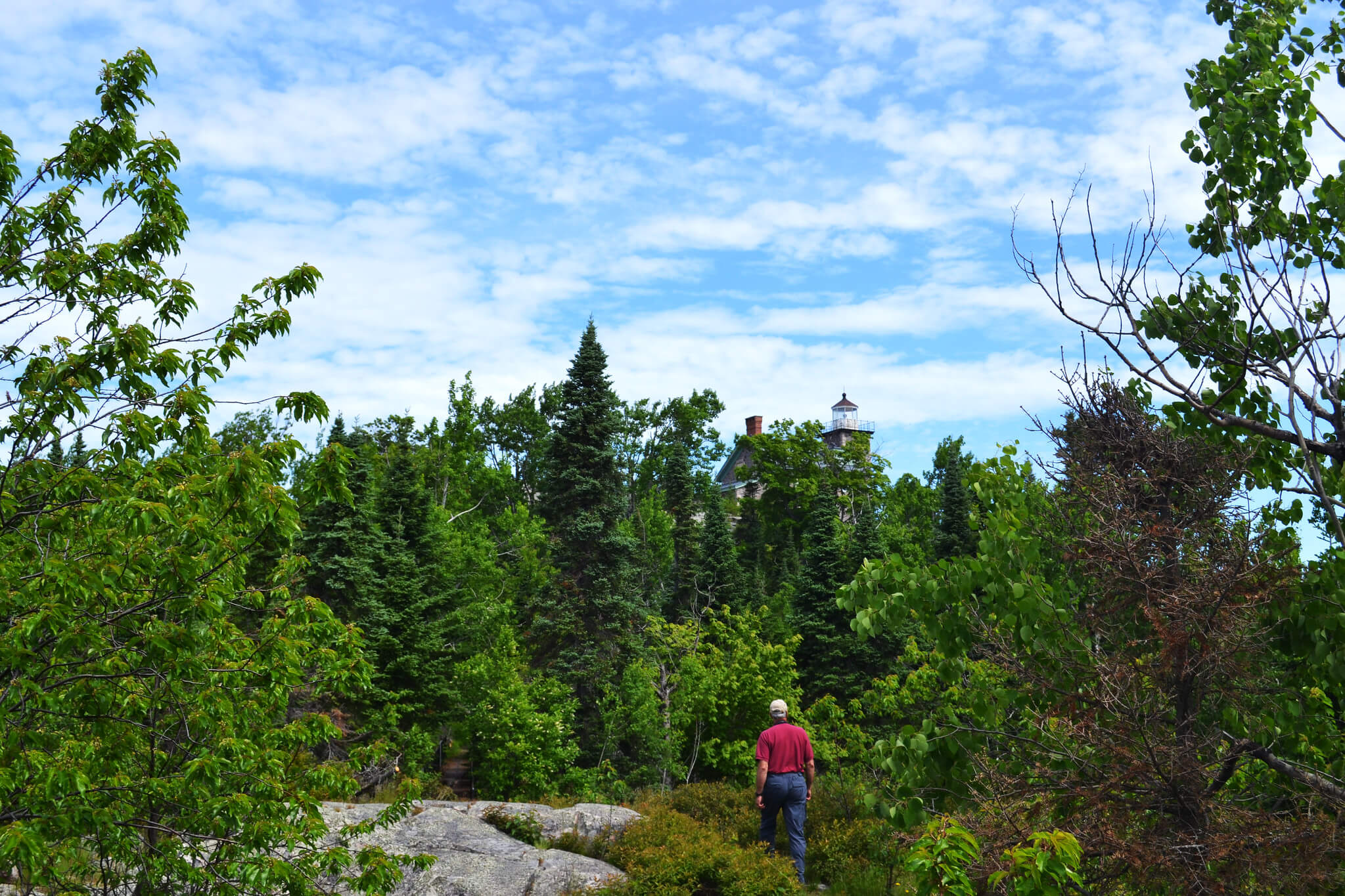 Looking out over the woods. Parks all over Wisconsin have been conserved using the Knowles-Nelson Stewardship Program.